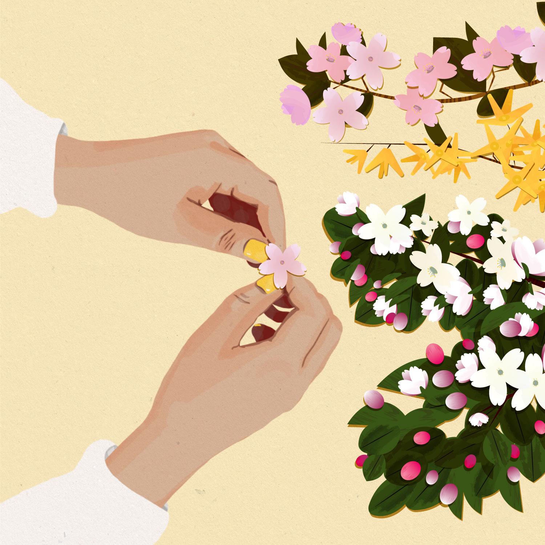 Illustration Printemps - mains qui tiennent une fleur de sakura et un ensemble de branche de fleurs de cerisiers, forsythia et fleurs de pommiers